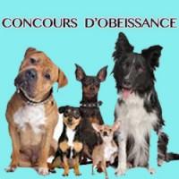 Concours d'obéissance – Centre canin